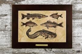 Картина «Пять рыб» серия «Сабанеев»